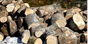 medienos kaitrumas kaloringumas